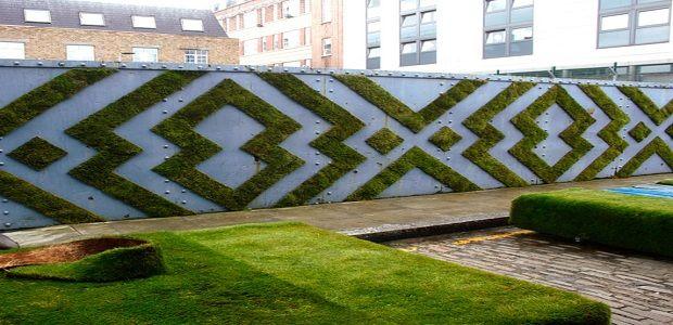 Moss Graffiti on Fence