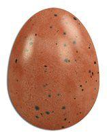 Fire. Satin Finish. Scarva Nano Colours NR010 Uluru Stoneware Reactive Ceramic Glaze