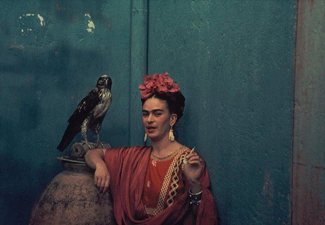 Frida Kahlo with her pet hawk... No big deal. Love the color scheme here.  Cool article/photos by http://www.anothermag.com/design-living/1467/frida-kahlos-monkeys-dogs-birds