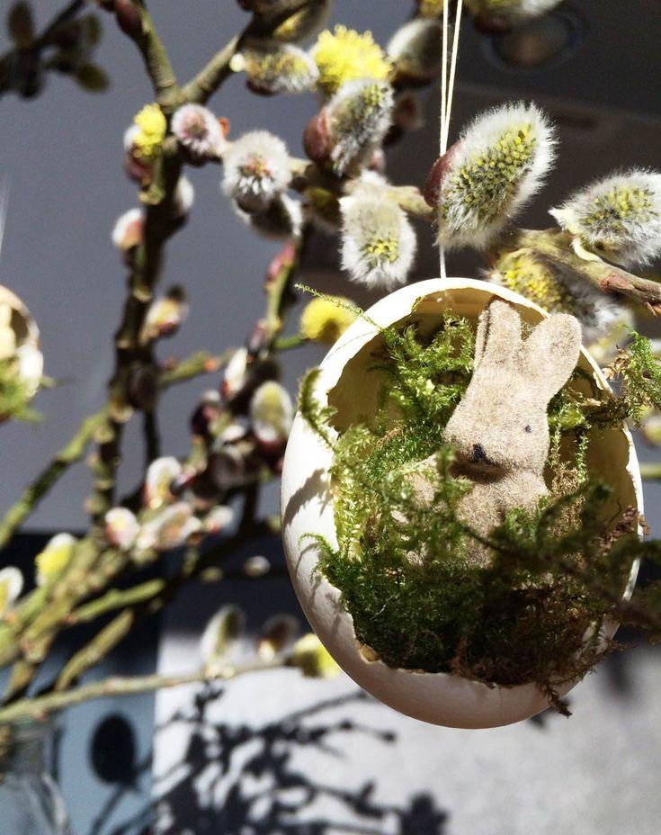 Hase sonnt sich in seinem Nest gebettet auf Moos. Schnelles DIY zu Ostern.