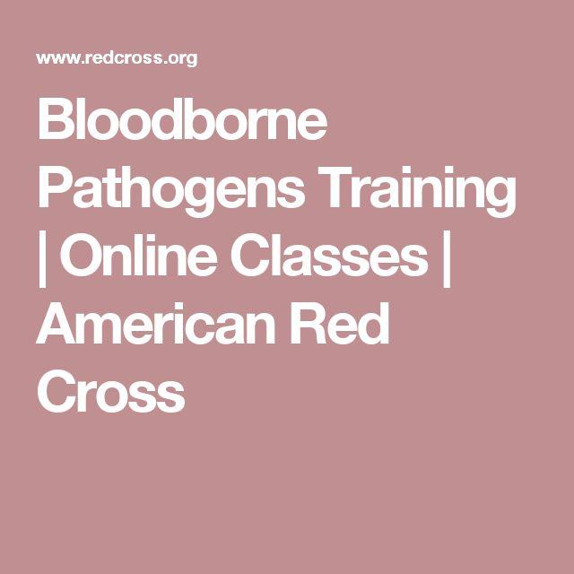 Bloodborne Pathogens Training | Online Classes | American Red Cross