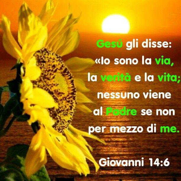 http://bible.com/123/jhn.14.6.NR94
