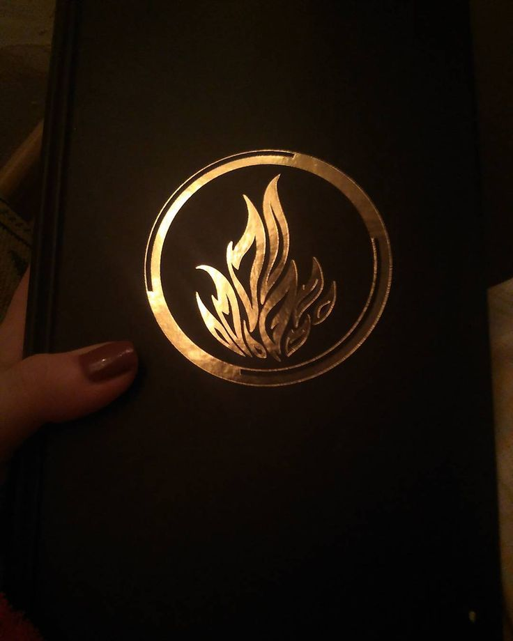 #divergent #veronicaroth #vervain #reading #holiday #winter2017 #style #fashion #fashionblog #newideas #newpost #youngartist #january