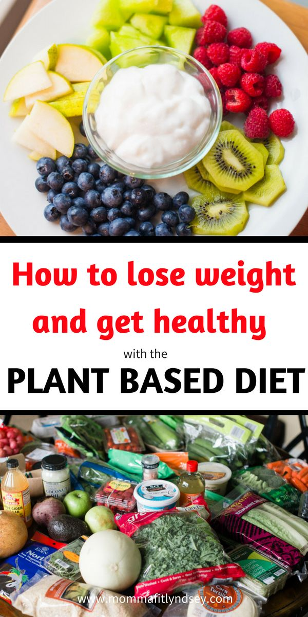Plant Based Diet and Easy Recipes on a Budget for Plant Based Diet Beginners #vegan #plantbaseddiet #veganmeals #wholefoods