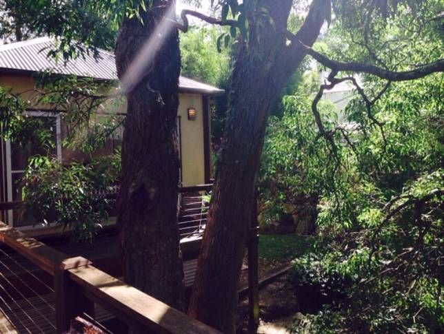 River Bliss Treehouse, a Kangaroo Valley Self contained accommodation   Stayz