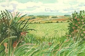 Image result for david hockney watercolors