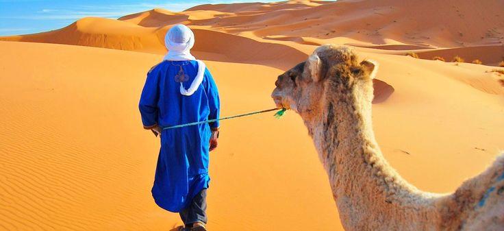 Individuelle Marokko Reisen  http://www.africa-royal-tours.de/marokko-reisen-individuell/