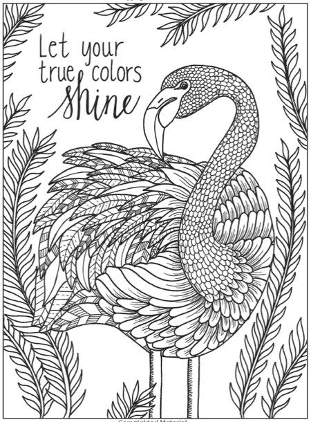 Adult Coloring Pages Free Print Offs