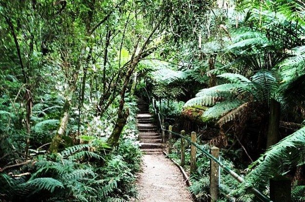 Walks - Melbourne