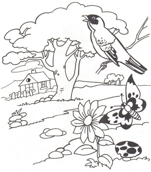 Pin by Paula St. John on coloring pages | Coloring pages, Landscape ...