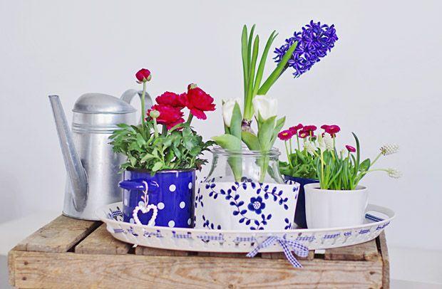 http://tytuurzadzisz.pl/przenosne-miniogrody/ mini gardens