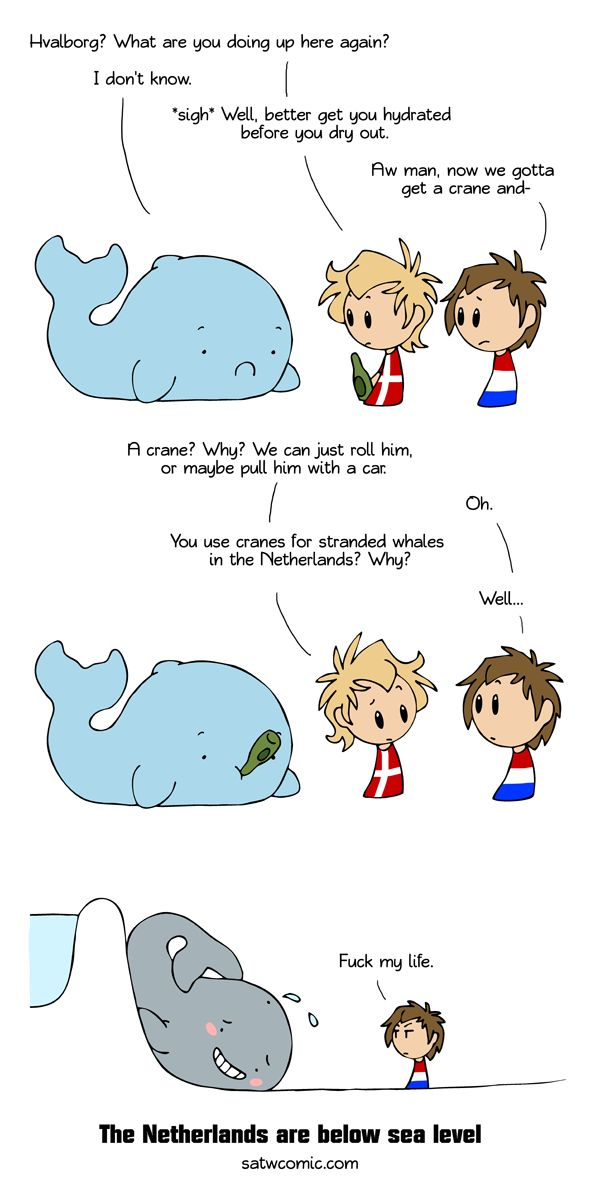 I was talking with a woman from the Netherlands and somehow we ended up talking about how our countries treat stranded marine life. Of course the Netherlands have regular beaches where whales can get stranded, but the first thing that popped into my head were whales flopping over the sides of Netherlands' dams.