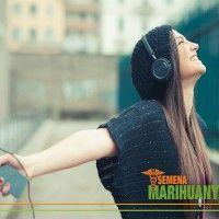 Poslech muziky je díky účinku léčebného konopí obohacen K subjektivnímu pocitu zlepšení poslechu dochází kvůli ovlivnění hned několika mozkových center Většina rekreačních uživatelů i pacientů léčících se konopím se v tomto ohledu shoduje...