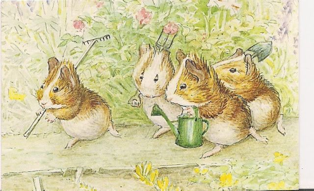 """From Cecily Parsley's Nursery Rhymes, 1922. Guinea pigs with gardening tools. """"We love our little garden. And tend it with so much care."""""""