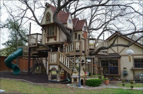 the tree house in Dallas