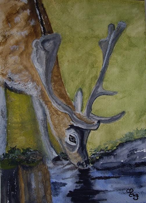 Buck at Bushy Park watercolour