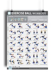 """Exercise Ball Workout Poster for Women 19""""X 27"""" Laminated"""