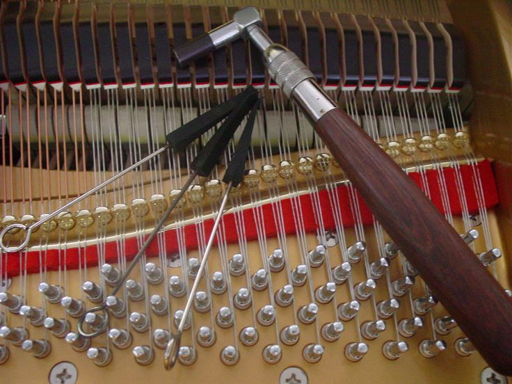 To learn how to tune a piano this year...