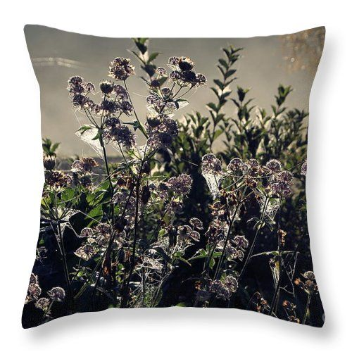 """Morning Dew Backlight Throw Pillow by Sverre Andreas Fekjan.  Our throw pillows are made from 100% spun polyester poplin fabric and add a stylish statement to any room.  Pillows are available in sizes from 14"""" x 14"""" up to 26"""" x 26"""".  Each pillow is printed on both sides (same image) and includes a concealed zipper and removable insert (if selected) for easy cleaning."""