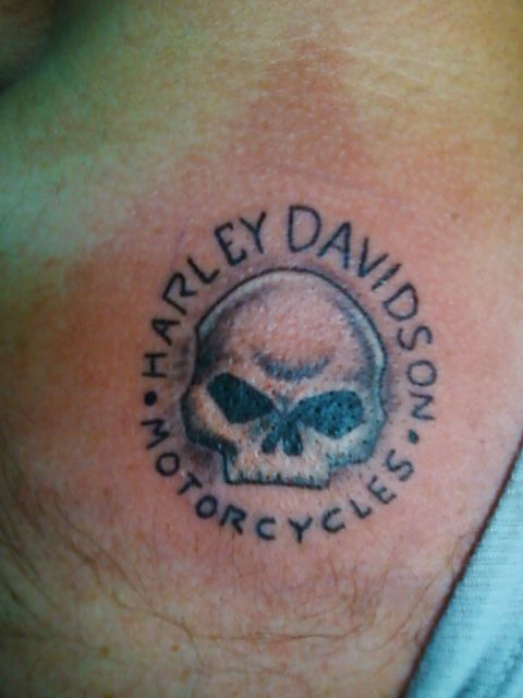 Harley davidson tattoo tattoo pinterest harley for Harley skull tattoos
