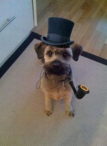 Este perro tiene un bombín, un monóculo y una pipa. Es de color beige, aunque el hocico y las orejas son más oscuras. Parece de caracter tranquilo y afable. Es un perro de talla mediana, y de ojos y uñas negras. Parece muy contento.