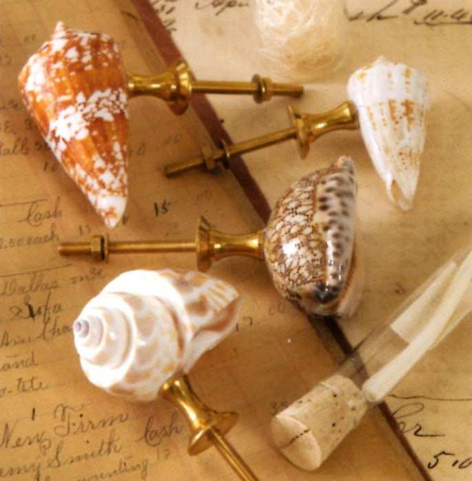 Natural Seashell Drawer Pull As Seen In Everyday With