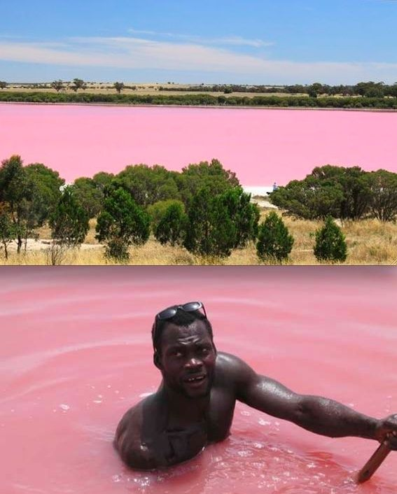 Lake Reetba..Senegal,  is known for its pink water. The water is as saline as Dead Sea and allows a person to float  easily