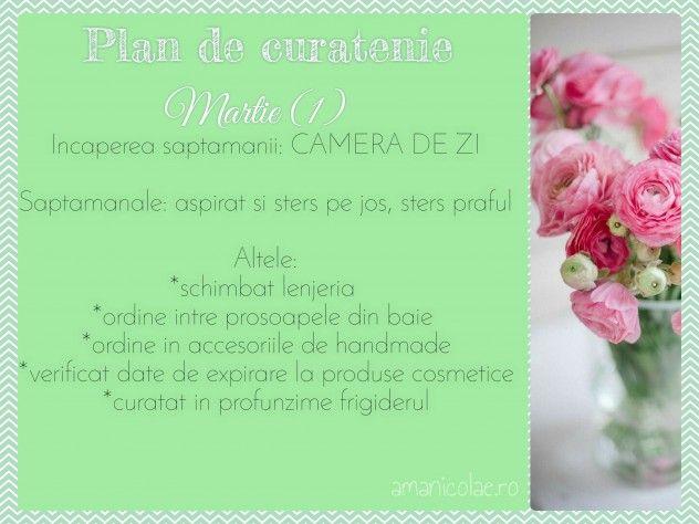 Plan de curatenie martie 1