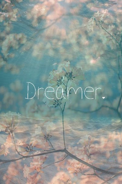 Dream, not just to dream but to FULFILL it