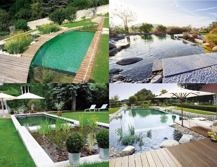 News di Consulenza Green a Udine: Biopiscine  http://www.localiving.it/news/1528887.html #bio #biopiscine #piscine #piscinenaturali #green #consulenza #consulenzespeciali #designer #consulenzadiimmagine #natura #verde #l4l