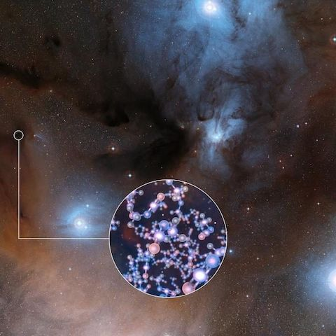 ALMA has observed stars like the Sun at a very early stage in their formation and found traces of methyl isocyanate a chemical building block of life.