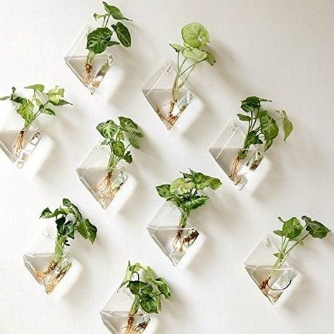 Hanging Plant Flower Glass Vase Terrarium Wall Fish Tank Aquarium Container Gd