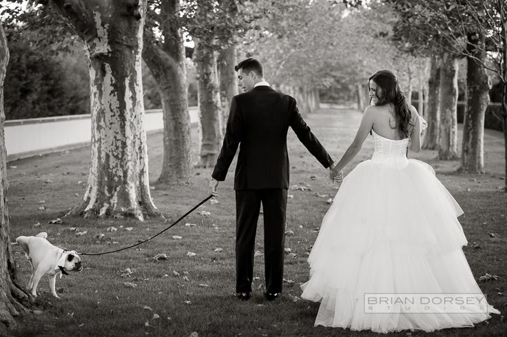 17 best wedding moments images on pinterest homecoming