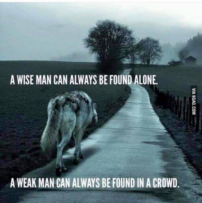 A wise man can always be found alone. via (ThinkPozitive.com)