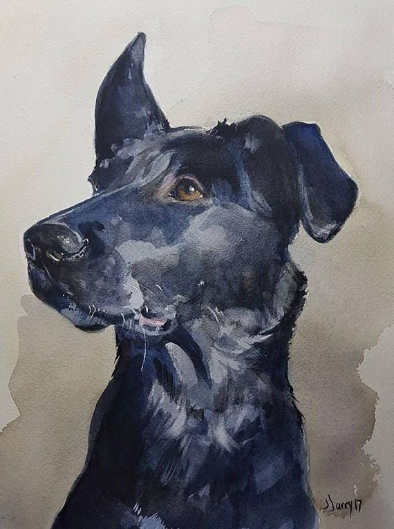 Dog Painting Dog Art Dogs Pet Portraits Dog Portraits Animal