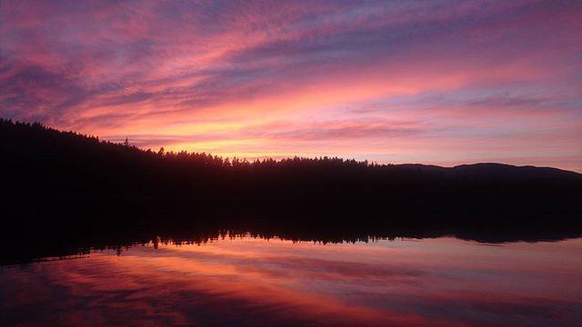 #solnedgang #fisketur #båttur #sommer #follsjø #visitnorway #visittelemark #sunset #fishing #boattrip #lake #summer