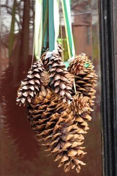 Pine cone bundle, easy alternative to a wreath.