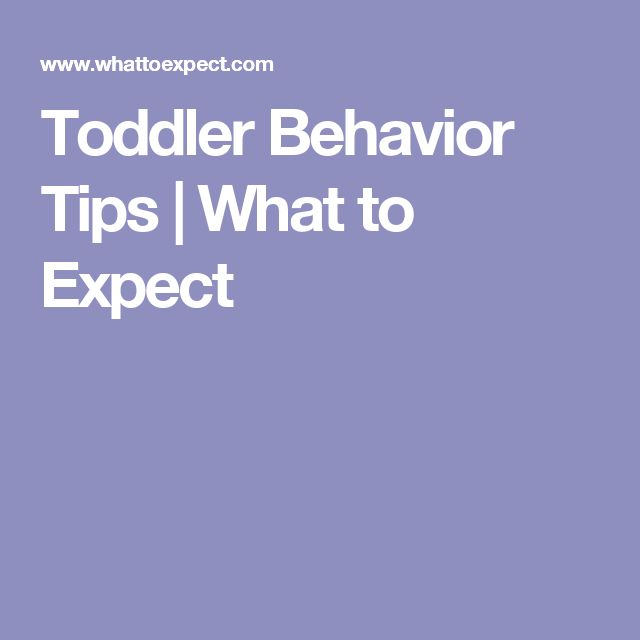 Toddler Behavior Tips   What to Expect