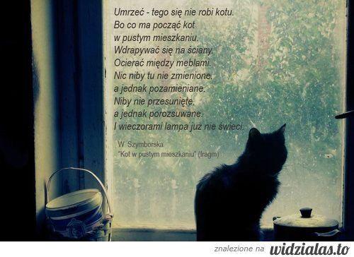 Umrzeć - tego się nie robi kotu.  Bo co ma począć kot  w pustym mieszkaniu.  Wdrapać się na ściany.  Ocierać między meblami.  Nic niby tu nie zmienione,  a jednak pozamieniane.  Niby nie przesunięte,  a jednak porozsuwane.  I wieczorami lampa już nie świeci.