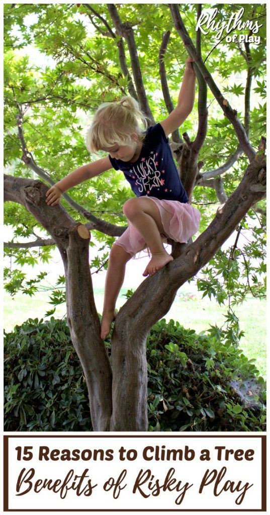 Risky Play Why Children Love It And >> 15 Reasons To Climb A Tree And Other Benefits Of Risky Play Nature
