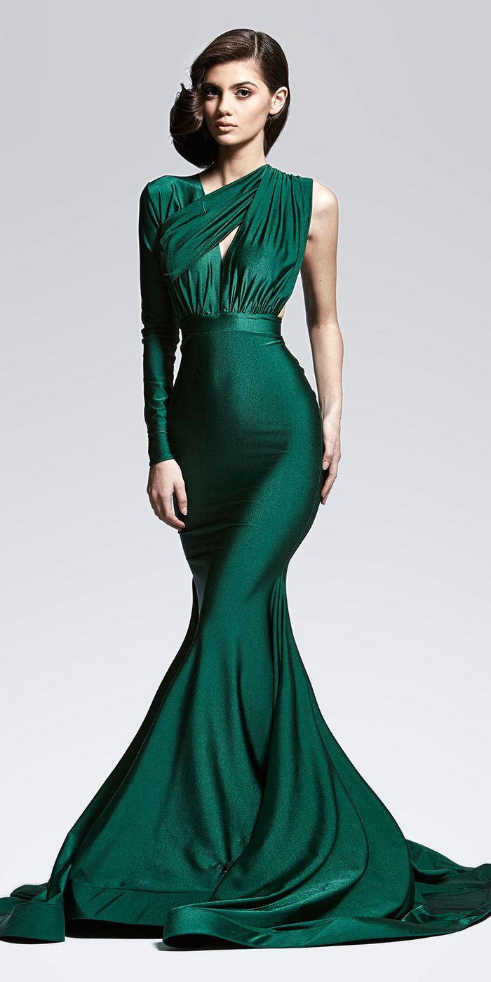 Lena Gown, $1,495.00 jαɢlαdy - if this had the other sleeve would be stunning