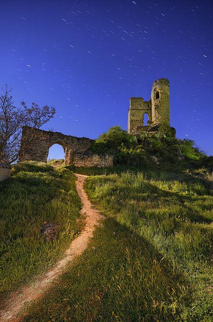 El castillo de Pelegrina es una fortificación española construida entre los siglos XII y XIII en la localidad de Pelegrina, en el término municipal de Sigüenza (Guadalajara), España.