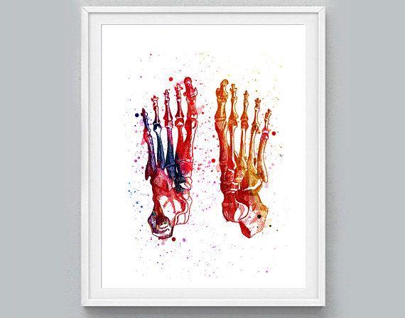 Doctor Office Decor Orthopedist Gift Anatomy Art Medical Poster Skeletal Bones Watercolor Print Chiropractor Hand Bones Foot Bones