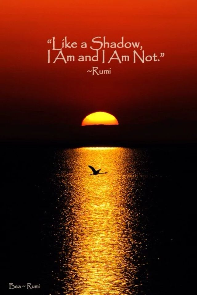 """Like a Shadow, I Am and I Am Not."" ~ Rumi"