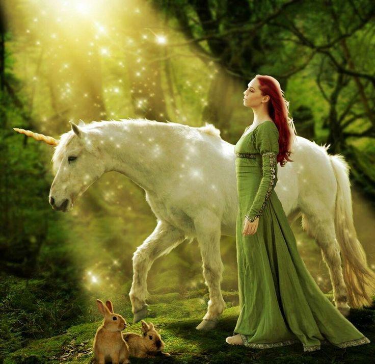 ac1b66900132f8bf5f3cfc81ebe49dba--unicorns-and-mermaids-unicorn-art.jpg