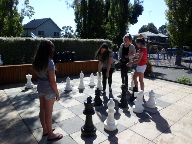 Look at our massive, almost life size chess board! The kids will love it!