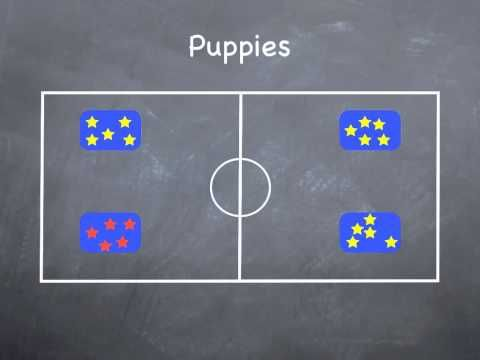 P.E. Games -  Puppies
