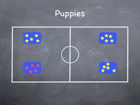P.E. Games -  Puppies