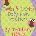 These posters coordinate with the Owls and Dots classroom theme set.