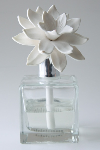 20 Best Images About Diffuser On Pinterest